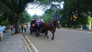 Central Park…..